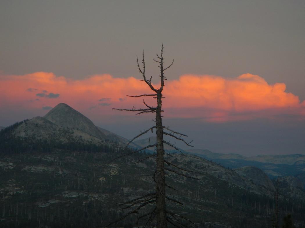 Landscape Yosemite Park - California