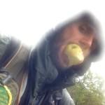 Frutta rubata