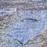 roccia bagnata=sorgente