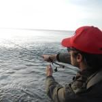rapala spinning marino alba
