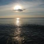 La meraviglia del mare!