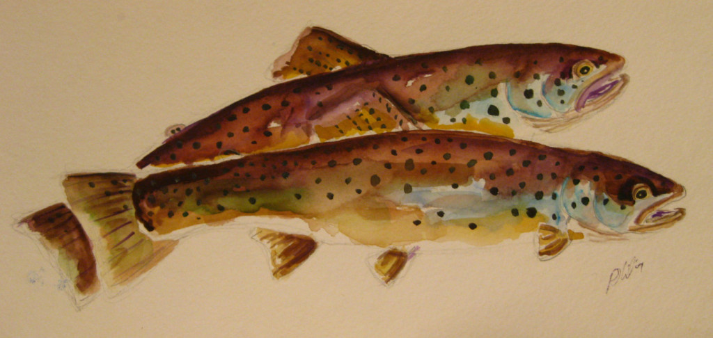 brown trout study di philip http://illustratedtrout.blogspot.it/  (Tratto da capitanrustyhook.com)