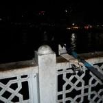 Porta canne per il ponte