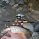 Trote pescando leggero