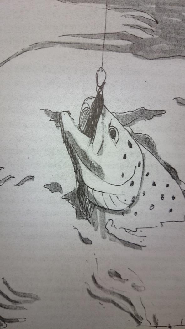 """Illustrazione del libro """"Trote a revù"""""""