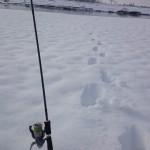 Camminando nella neve...