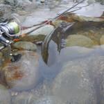 big trout fishing rod pietro invernizzi
