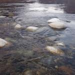L'acqua del Sesia