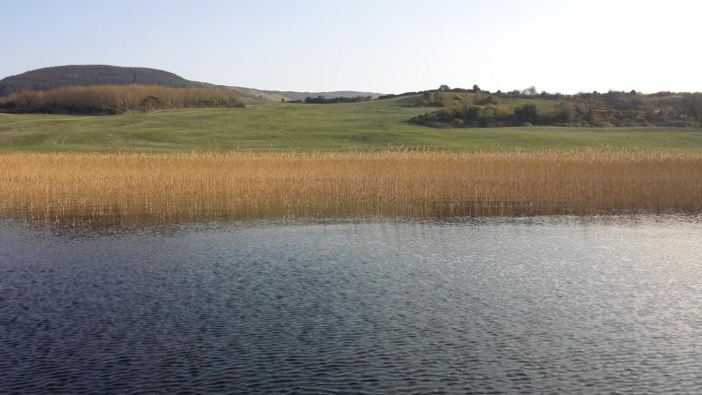 Paesaggio Irlanda