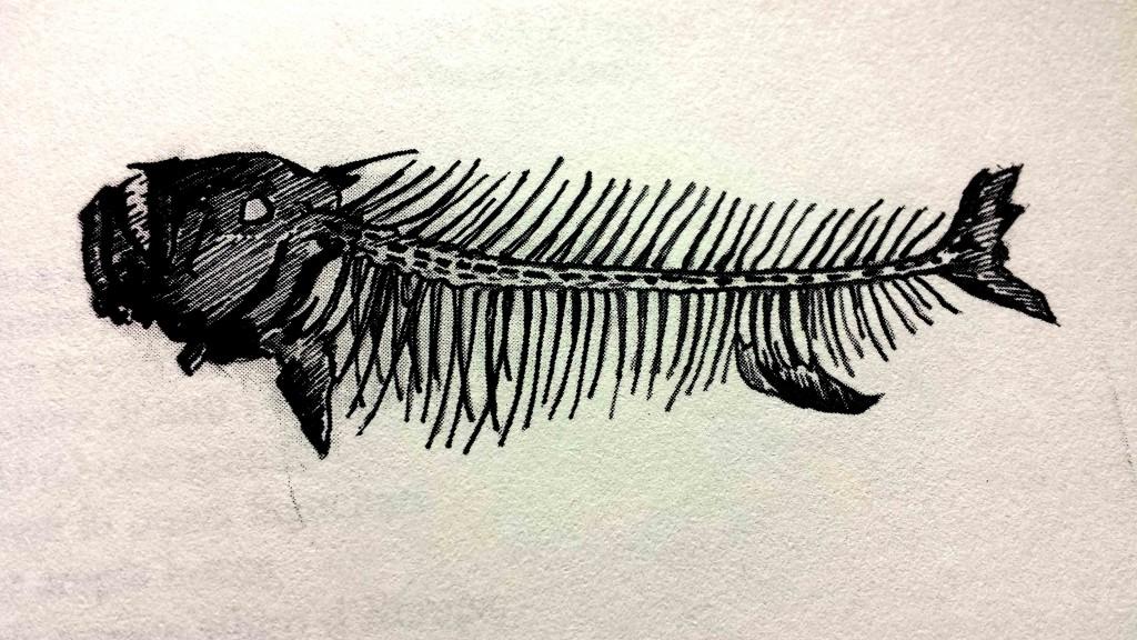 Illustrazione del libro Bestiario della pesca con canna in acque dolci