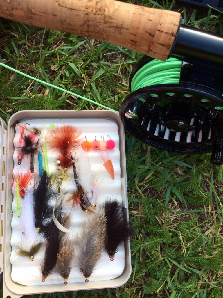 Battua al bass all'Idroscalo - pesca a mosca Anonima Cucchiaino