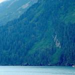 Un peschereccio esce nel mare alaskano