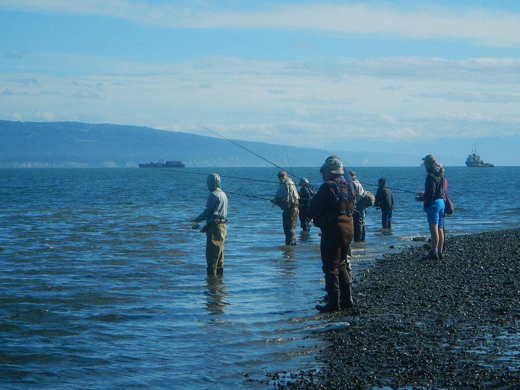 """Pescatori """"combat fishing"""" all'imboccatura di un torrente! Risalgono i Silver..."""