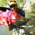 Pietro e un Big Red Salmon