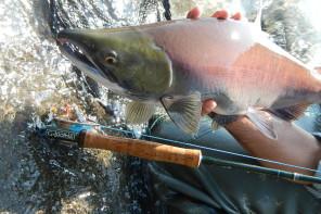 Fishing in Alaska – Terza ed Ultima Parte – Pescare con gli Orsi