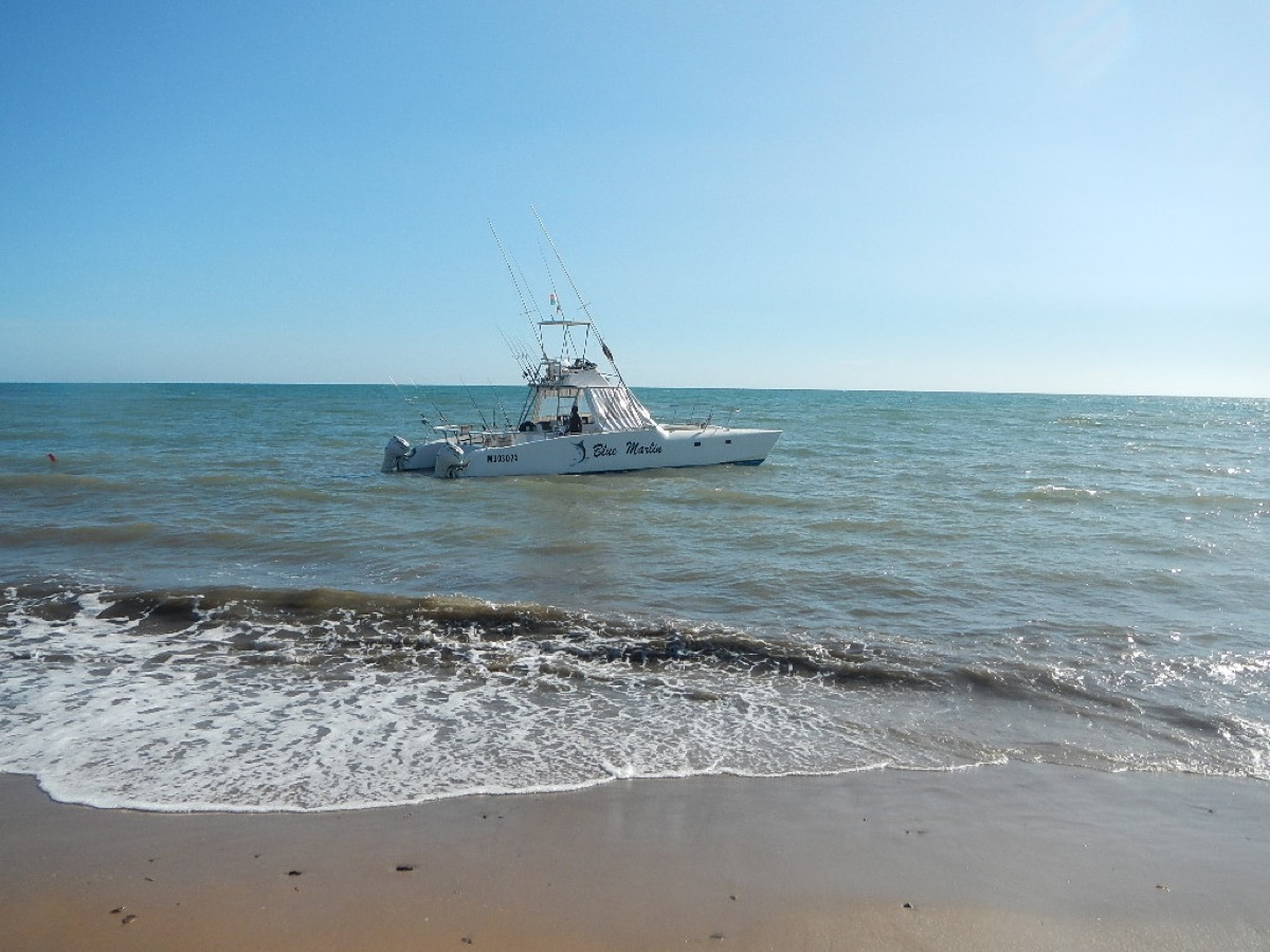 Blue Marlin, barca da pesca favolosa!