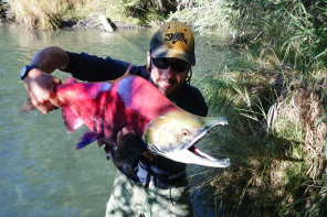 Fishing in Alaska – Seconda Parte – Sockeye, Coho, Pink e non solo…