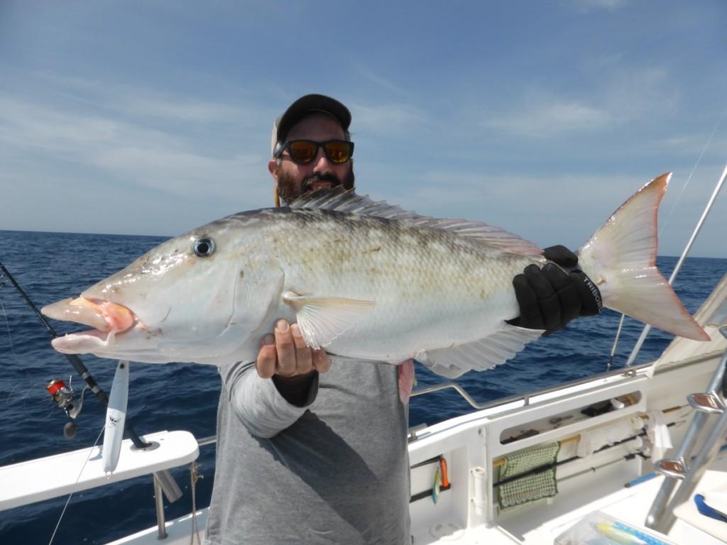 Huge Capitan Fish