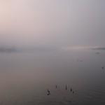 Paesaggi all'alba sul grande fiume