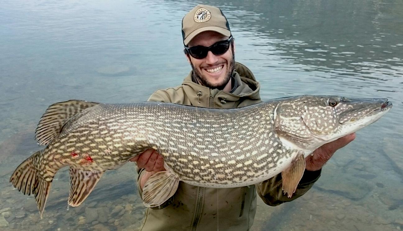 Apertura pesca al luccio 2016 grandi sorprese vengono a for Grosso pesce di lago