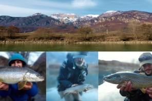 Trote a Trento. Pesca in Adige a fine febbraio…