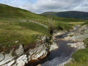 Un fiume scozzese, reso scuro dalla torba
