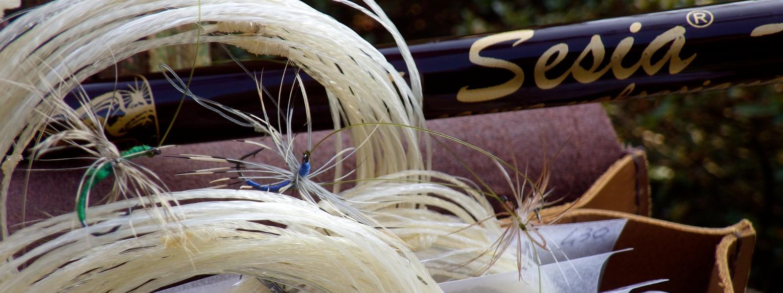 Foto di essenzapesca.com