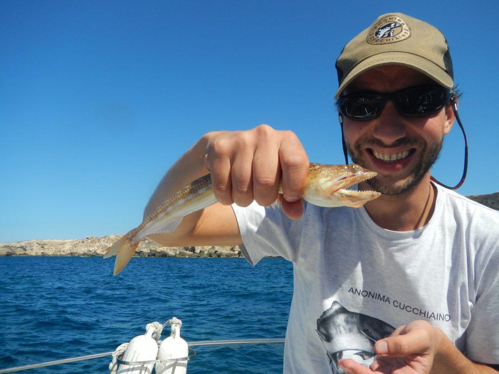Pesce Lucertola a spinning