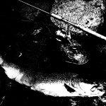 Fishing Halloween. Storia di pesca dell'orrore