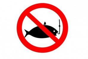 Pesca&Fidanzata – Quando un pescatore non pesca