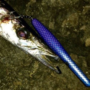 Barracuda preso con artificiale Sudest Custom Lures