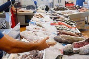Il persico africano si trasforma in cernia: la truffa dei pesci spacciati per specie più pregiate