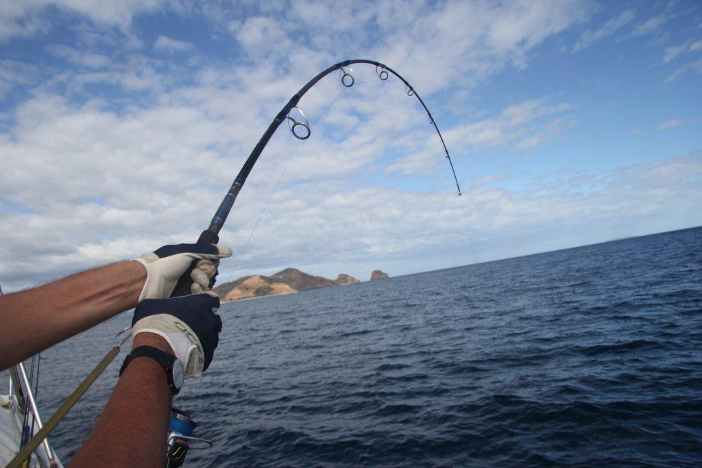 Shimano Ocea Plugger 150 gr in piega su squalo!