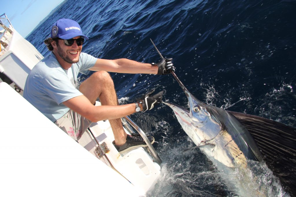 record sailfish spinning grande pesce vela