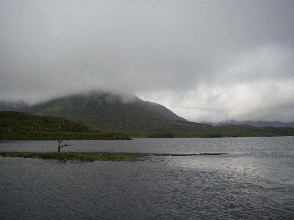 "Dal blog di pesca ""sexyloops.com"" - Thanks! (Pine-Island, Ireland)"