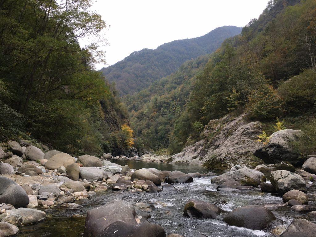 """Val Mastallone, """"La Selva"""""""