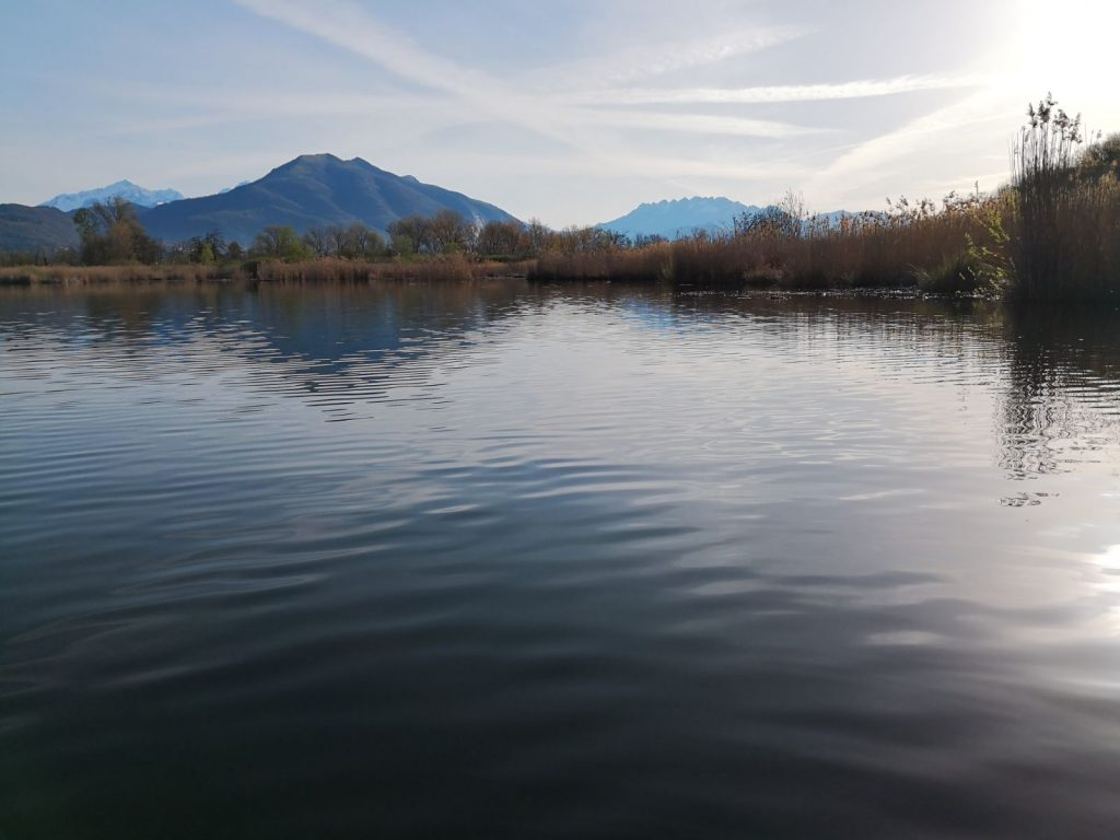 Lago prealpino