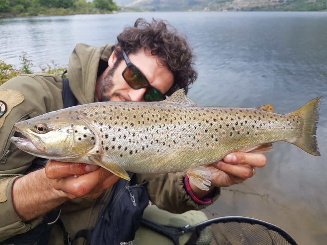 Pietro Invernizzi, Brown trout