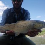 Big brown trout, Pietro Invernizzi