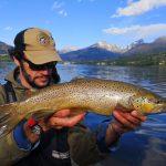 Big brown trout pietro invernizzi, France
