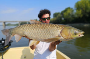 Carpa Amur Pietro Invernizzi Record big fish