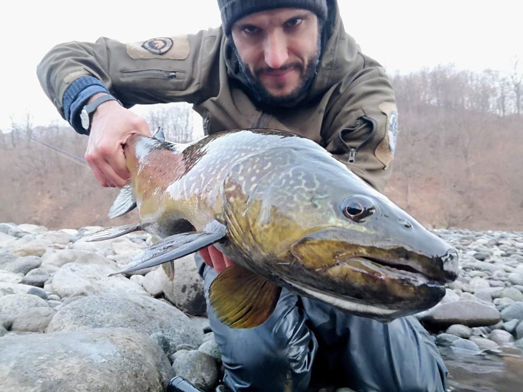 Big Marble Trout, trota marmorata, Pietro Invernizzi