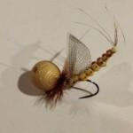 Spinfly_Roberto_Cazzola