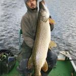 Oliffo - 122 cm