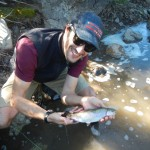 rainbow trout East Carson River