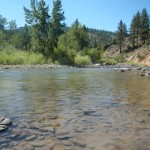 East Carson River