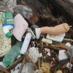 Rifiuti plastici a Isola Serafini, Po
