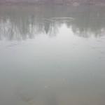 L'acqua dell'Adda