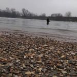 Pescando nell'Adda