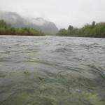 In mezzo scorre il fiume!